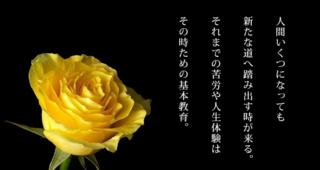 苦しみが希望に変わる美輪明宏の名言